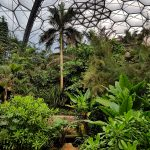 Eden Project: The Sci-Fi domes that shelter ecosystems
